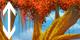 https://us.ohmydollz.com/design/fiche_maison/maison/arbre_automne_1.png